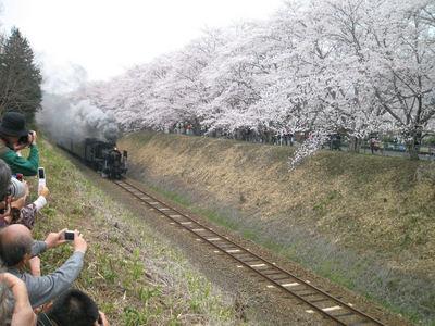 188 - コピー.JPG